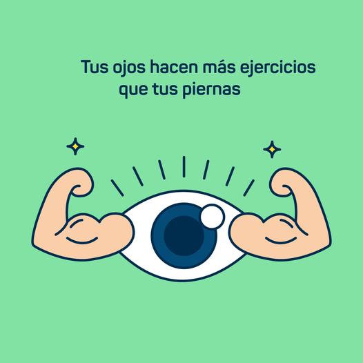 DATO CURIOSO | Tus ojos hacen más ejercicios que tus piernas.  Es un dato que …